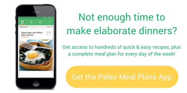 Paleo Meal Plans (app for iPhone)